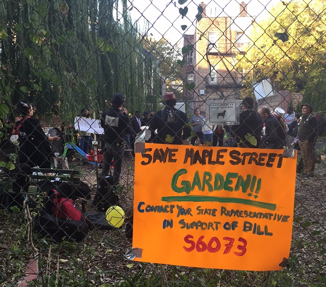 Save Maple Street Garden sign on fence