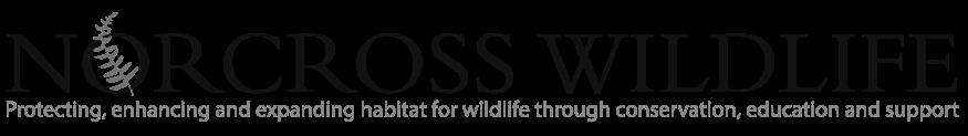 norcross-foundation-logo-small-bw