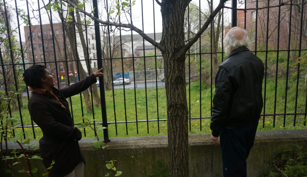 Request that NYC Parks Incorporate Locally-Designed Holistic Health