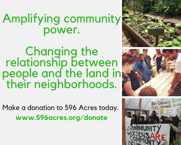 Amplifying community power. Changing the relationship between people and the land in their neighborhoods. Make a donation to 596 Acres today.